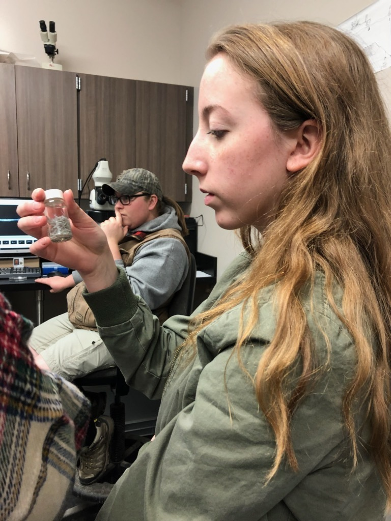 Alcona HS students attended a career experience trip to the US Fish & Wildlife Service in Alpena. USFWS is a federal agency that protects endangered species, manages migratory birds, restores fish/wildlife habitat, and enforces laws to protect fish/wildlife for the United States.