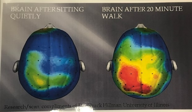 This picture demonstrates (L) your brain after sitting quietly for 20 minutes and (R) your brain after a 20 minute walk.